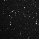NGC 4565 (cropped),                                Jan Curtis