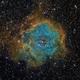 Rosette Nebula,                                sergio.diaz