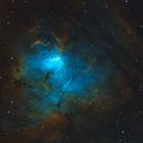 NGC 1491,                                Barry Wilson