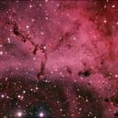 Rosette Nebula,                                Adrie Suijkerbuijk