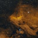 IC 5070 (Pelican Nebula) Bicolor,                                Brett Alcox