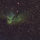 NGC 7380 Wizard Nebula-SHO-Meade 80 ED triplet-Orion flattener-ASI 1600 MM-Pro-crop,                                Adel Kildeev