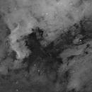 NGC 7000,                                Dan Pelzel