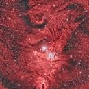 NGC2264,                                Roy Hagen
