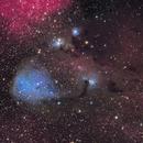 IC 447 - Dreyer's Nebula,                                Yizhou Zhang
