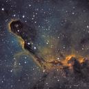 IC 1396 - Elephant's Trunk,                                Gaw