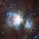 Orion Nebula,                                GoldfieldAstro