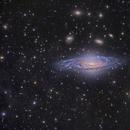 NGC 7331 LRGB,                                tonyhallas
