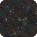 LDN 1235 Dark Nebula,                                Miles Zhou