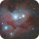 NGC 1977 - Running Man,                                Gerson Pinto