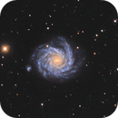 NGC 1232,                                Mark