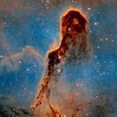 IC 1396 - Elephant Trunk Nebula,                                Paul H