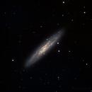 Sculptor Galaxy,                                Máximo Bustamante