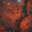 IC1318  The Butterfly  Gamma Cygni Nebula,                                Alberto Pisabarro