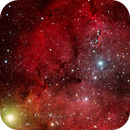 IC1396 Elephants Trunc,                                Heinz C. Weber
