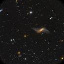 NGC660 Polar Ring Galaxy,                                Jerry Macon
