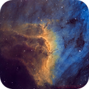 Pelican Nebula - Deep Sky West Remote Observatory,                                Deep Sky West (Lloyd)