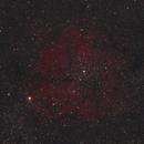 IC1396 - Elephant Trunk Nebula,                                austinstephens