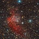 The Wizard nebula and Open cluster NGC 7380,                                Mincho Kardzhilov