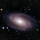 M81,                                Anca Popa