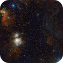 Orion Widefield (with Flame, Horsehead, Witchhead nebulae),                                Leonid Michail Thomas Janitzky
