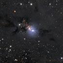NGC 1333,                                Steve Yan