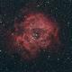 NGC 2244. Nebulosa Rosetta,                                Maurizio Dimino