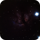 NGC 2024 Flame Nebula - 11 gennaio 2013,                                Giuseppe Nicosia
