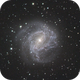 M83 Southern Pinwheel Galavy,                                Paul Cross