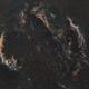 Sh 2-103 Cygnus Loop nine panel SHO Mosaic,                                Richard H