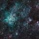 Tarantula Nebula,                                Steffen Boelaars