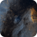 IC5070,                                astrowill
