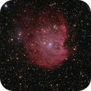 NGC 2175 Money's Head Nebula Sharpless s-252,                                astrotaxi