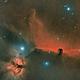 Horsehead Nebula (IC 434) and Flame Nebula (NGC 2024),                                Henning Schmidt
