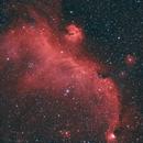 Seagull Nebula,                                Björn Hoffmann