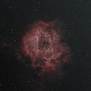 C49 - Rosette Nebula,                                bits__please