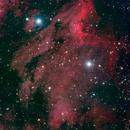 Pelican Nebula,                                Linda