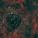 The Rosette Nebula OSC,                                Tam Rich