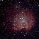 NGC2174,                                Robin Clark - EAA imager