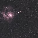 M8,                                Ferraro