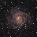 The Hidden Galaxy IC-342,                                Rodd Dryfoos
