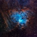 NGC 1491 Narrowband Natural,                                Andrew Barton