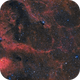 HRGB Sh2-101 Tulip Nebula Widefield,                                Chad Andrist