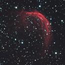 SH2-188 LHaRGB - The Shrimp Nebula,                                andrea tasselli