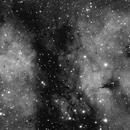 IC1318 Butterfly Nebula,                                Marco Stra