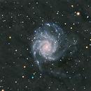M101 Pinwheel galaxy,                                apophis