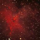 M16 Eagle Nebula -Pillars of Creation,                                Bill Beers