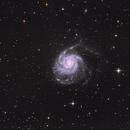 M101 da monteromano,                                Paolo Zampolini