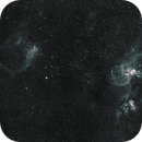 Statue Of Liberty Wide Field HA with DSLR NGC 3579,NGC 3576,                                Andre