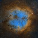 IC1396 SHO, Starry Version,                                Jim Lindelien